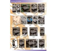 Рисунки Пескоструй 66